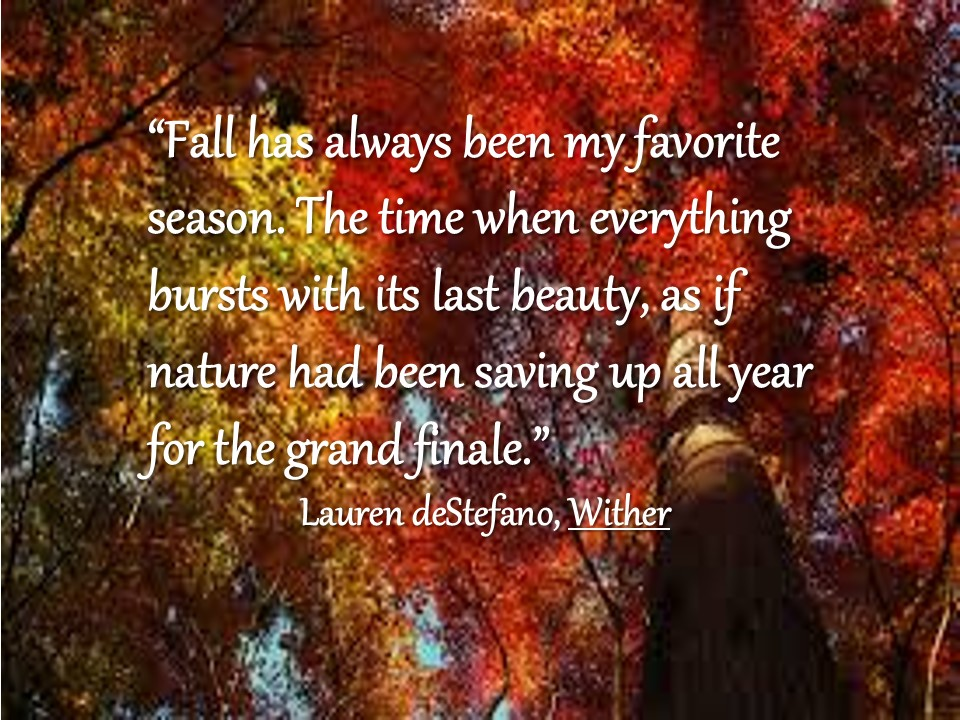 fall quotes 13