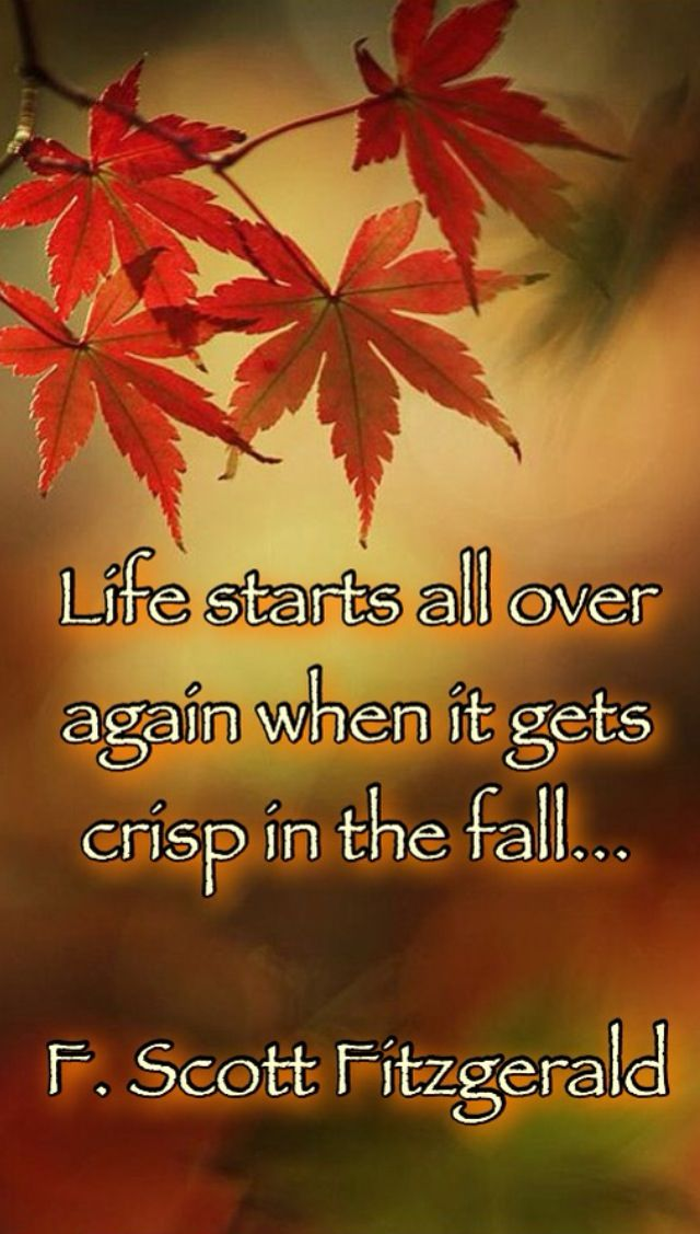 fall quotes 15