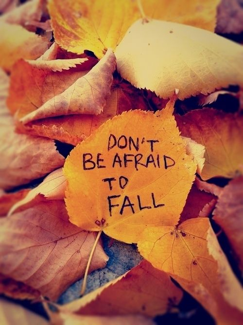 fall quotes 19