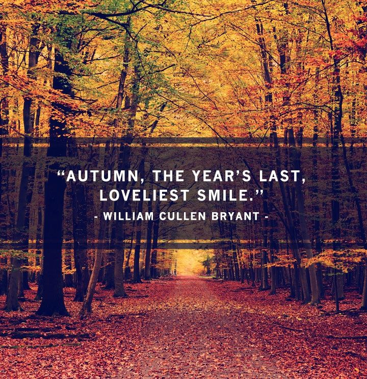 fall quotes 23