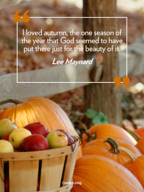 fall quotes 25