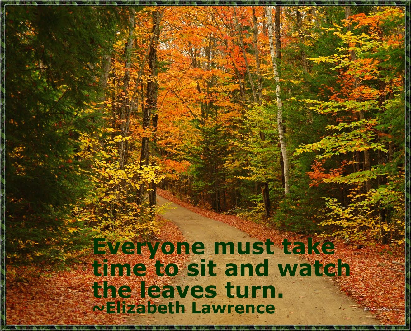 fall quotes 6