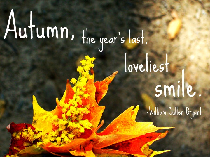 fall quotes 9