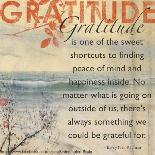 gratitude quotes 5