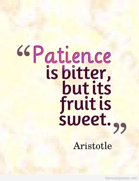 patience quotes 12