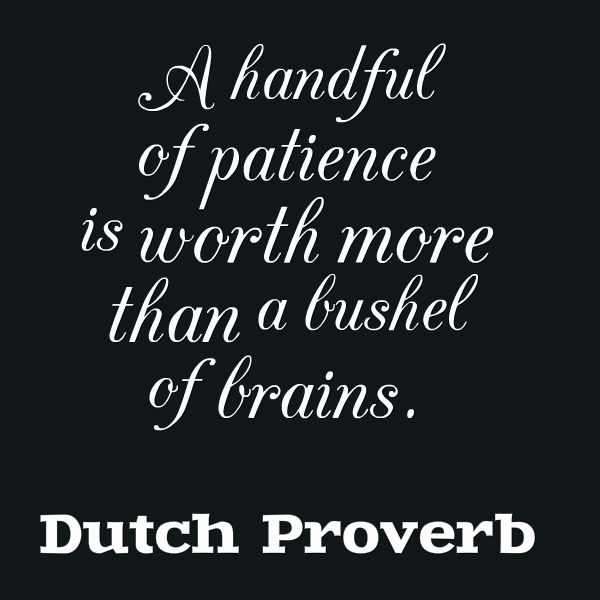 patience quotes 40