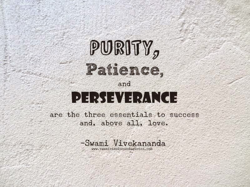 perseverance quotes 13