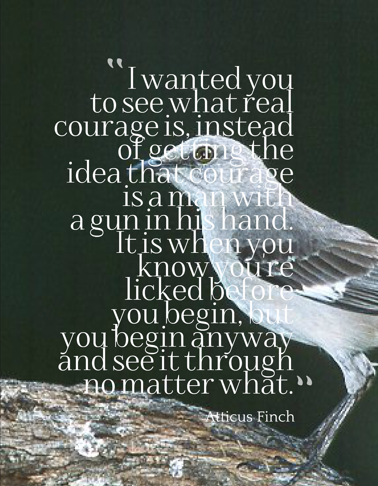 to-kill-a-mockingbird-quotes-1