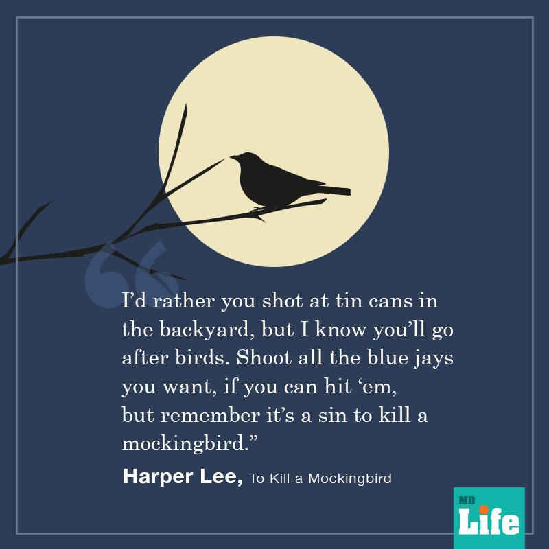 to-kill-a-mockingbird-quotes-3