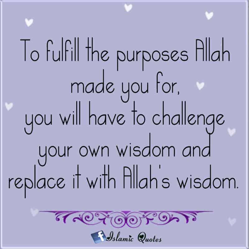 wisdom-quotes-14