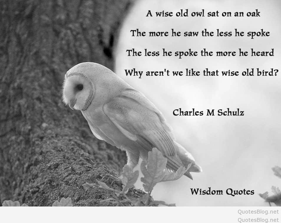 wisdom-quotes-31
