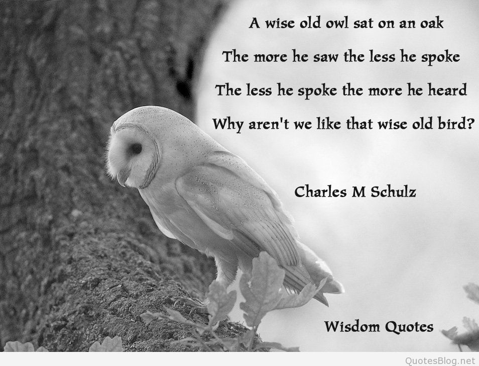 wise-quotes-14