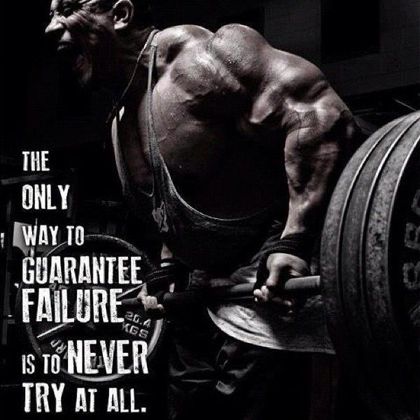 workout quotes 31